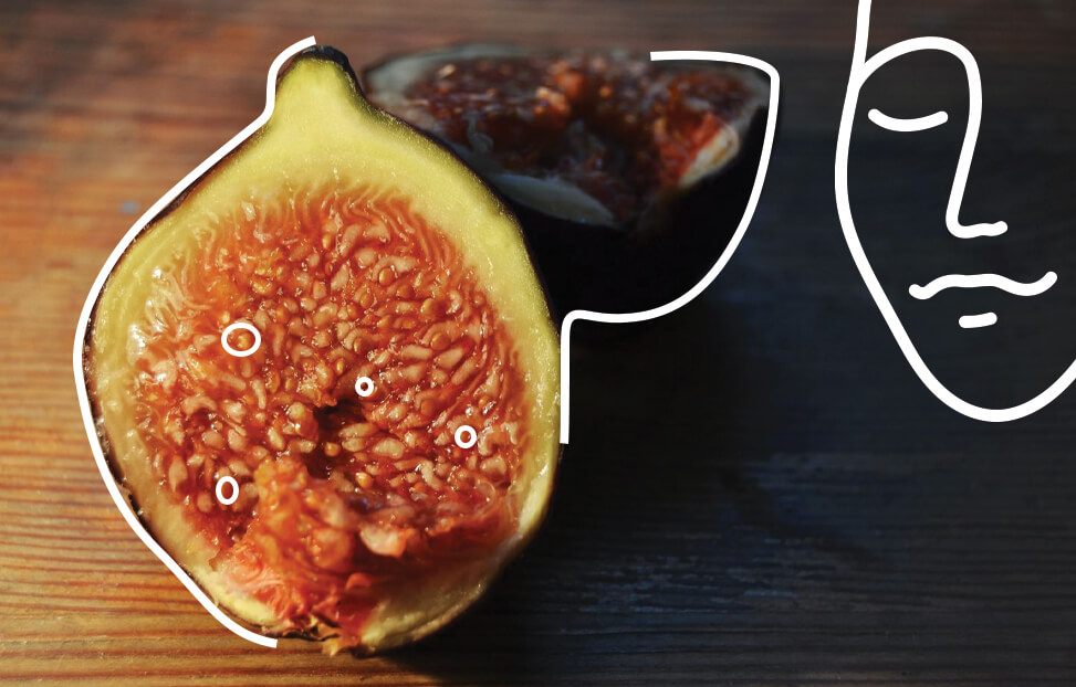 Fig_Figs